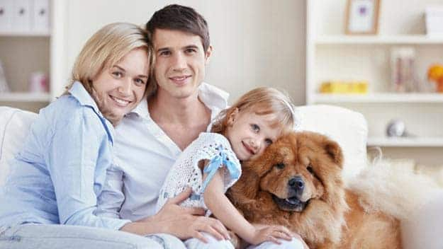 Wills & Trusts dog-young-family Direct Wills Wood Green